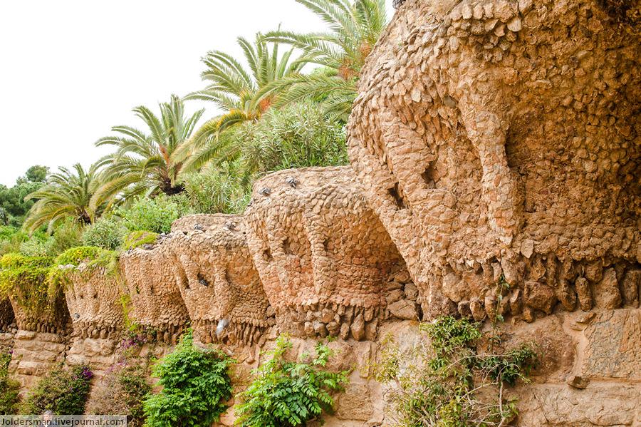 парк гуэля растения