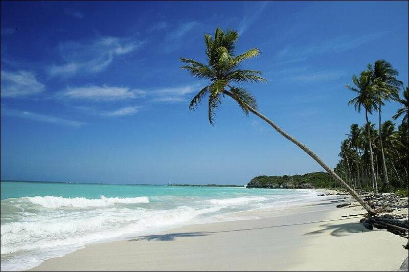 12 часов езды, сотни долларов за домик на пляже