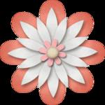 «RIVER_ROSE_5_KIT» 0_89429_29c9573b_S