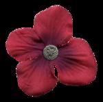 flower16-(lthdsgn).png