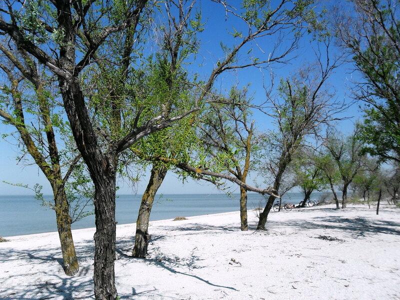 Апрель, побережье Азовского моря