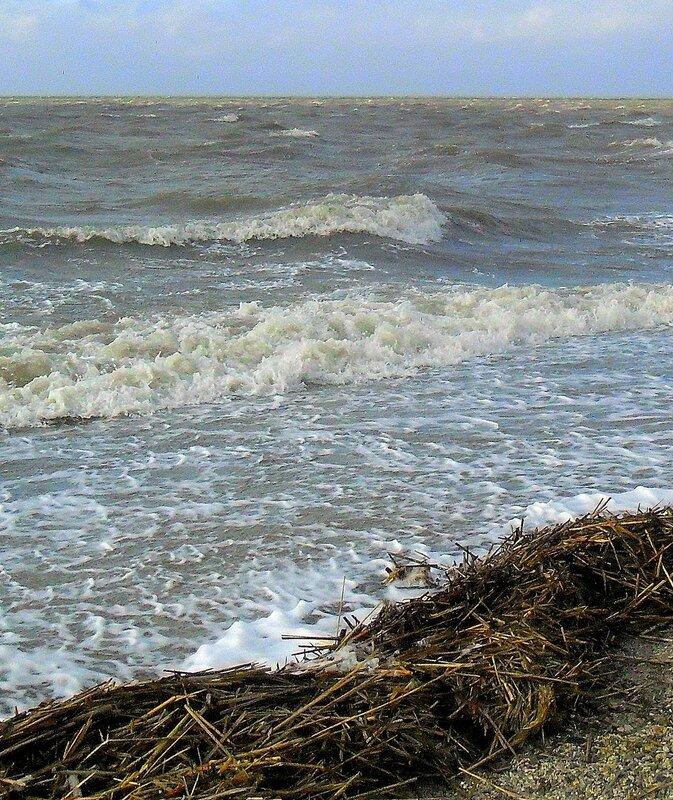 Вода набегающая ... SAM_5708 - 1.JPG
