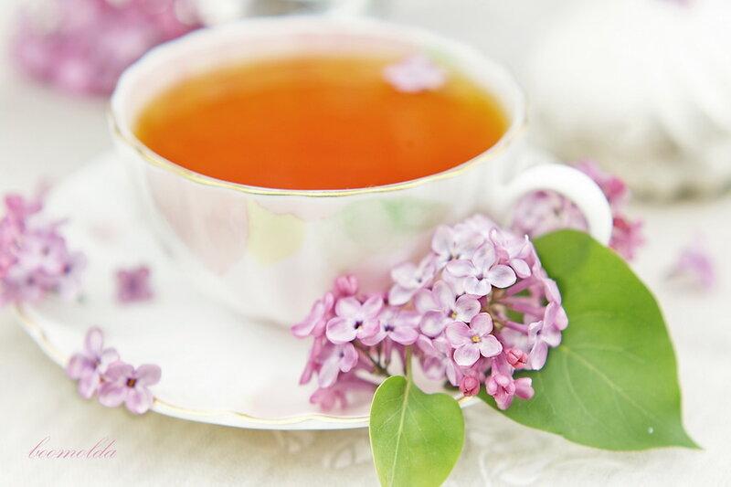 чаи для похудения эффективные мститель