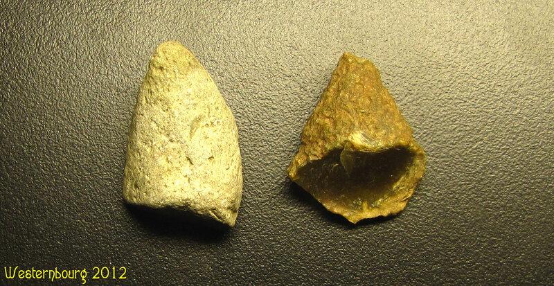 Зубы драконов (Найдены в устье р.Серебрянки)
