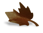 natali_autumn11_leaf9-sh.png