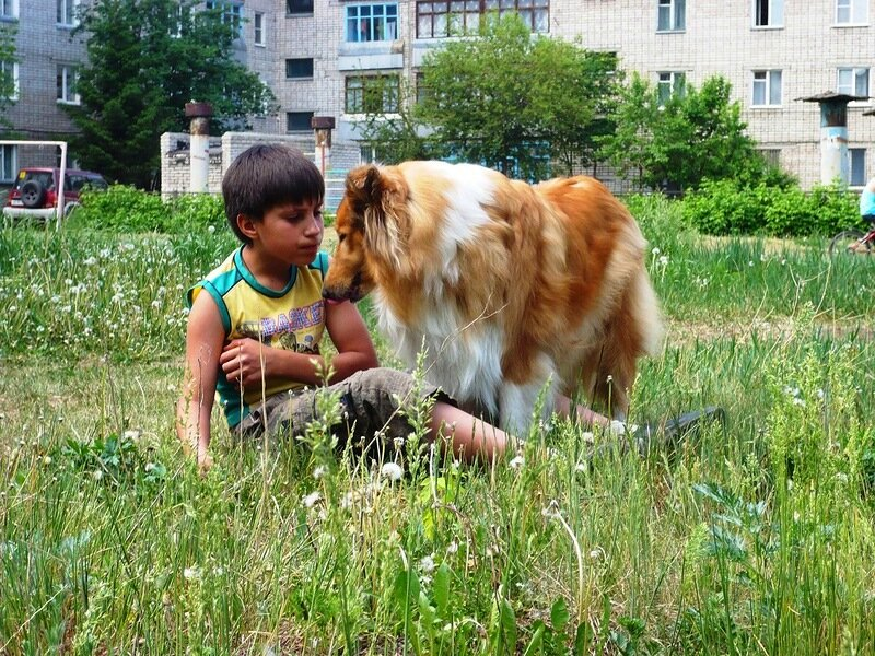 http://img-fotki.yandex.ru/get/6113/134559744.4/0_765b6_114b9dbd_XL.jpg