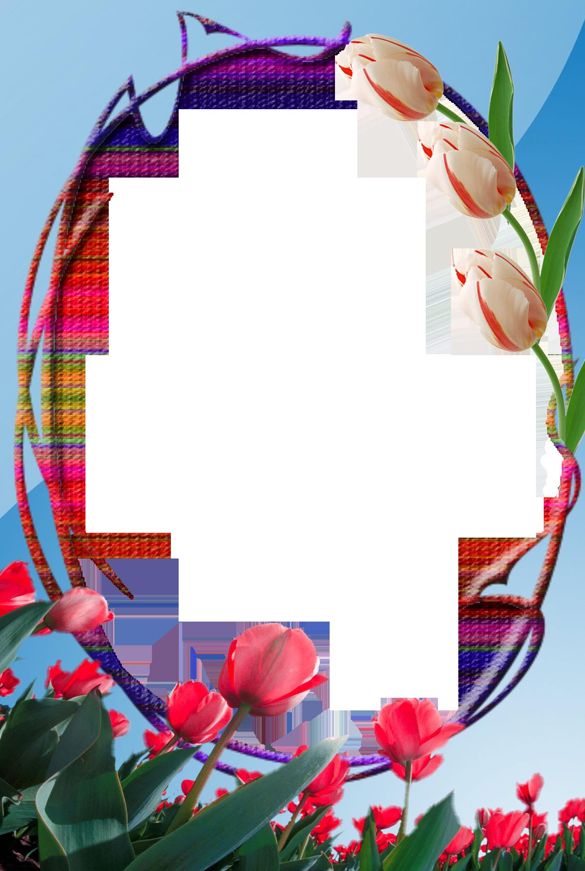 картинки с прозрачным фоном пнг