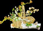 florju_piquenique_embellissement (6).png