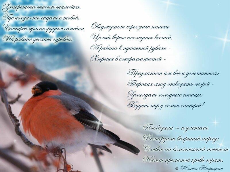 Красивые стихи про море - Otebe info