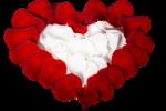 Noyemika_Valentines day (29).png