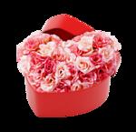 Noyemika_Valentines day (51).png