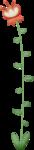 «RIVER_ROSE_5_KIT» 0_8942d_c8789037_S