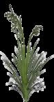 ms-minikit 3-grass.png