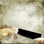 «скрап наборы IVAlexeeva»  0_8a22d_bf279297_S