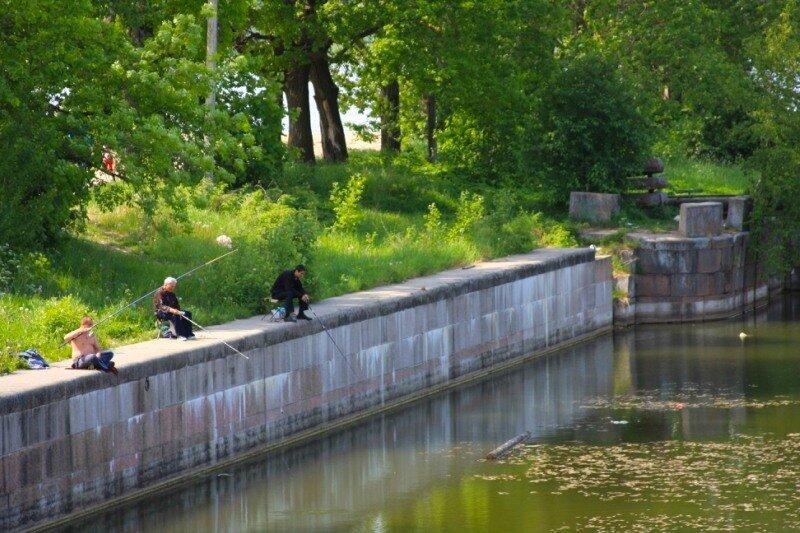 места для рыбалки в петербурге
