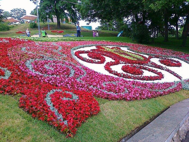 Тюльпан Евро 2012 и Петриковская роспись из цветов