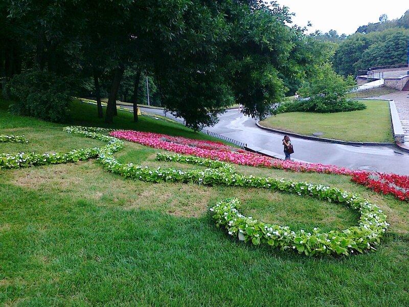 Узоры из цветов на склоне Певческого поля