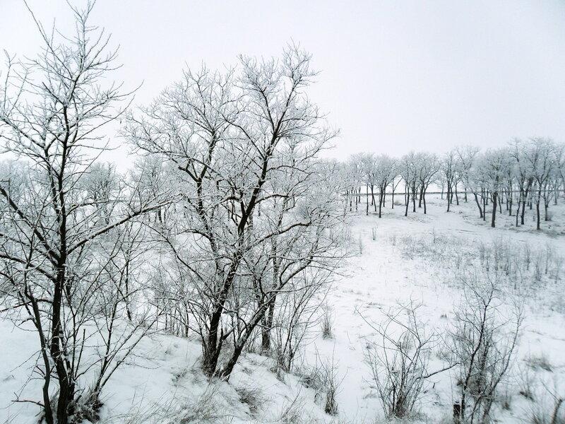 Заснеженность в марте