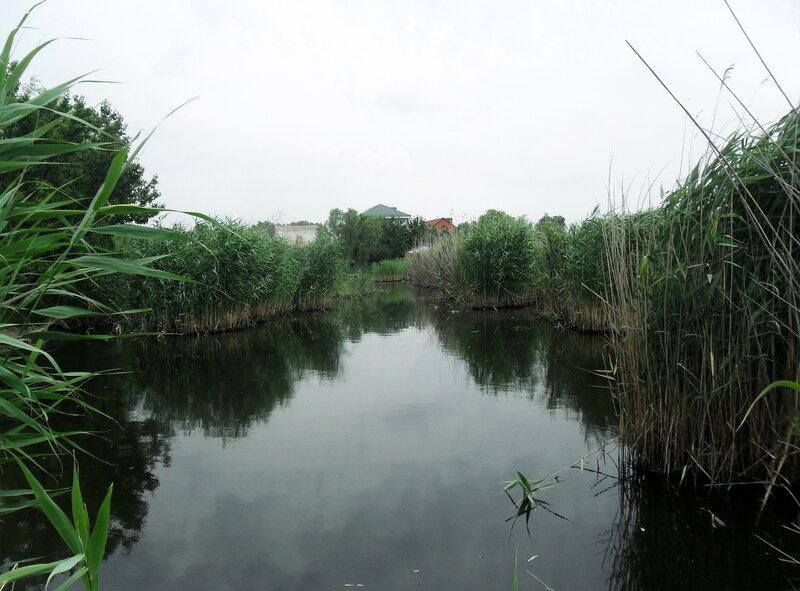 Путь на Стародеревянковскую, июнь 2012