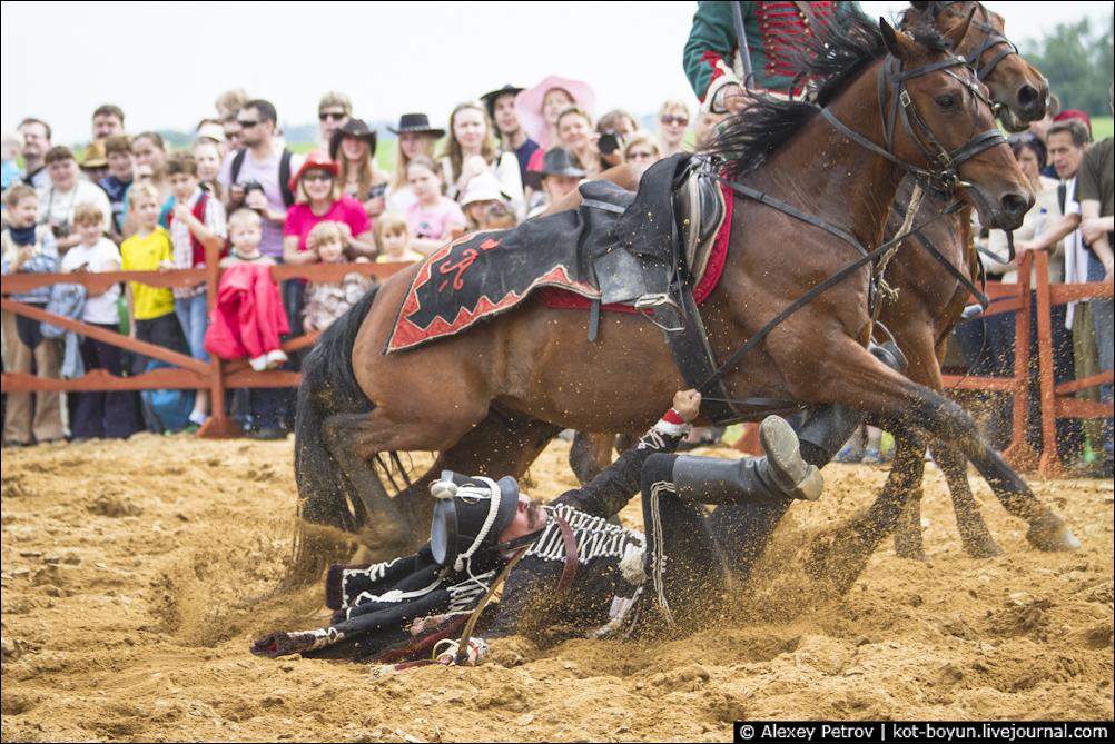 День лошади 31 августа открытки, смешные картинки именем