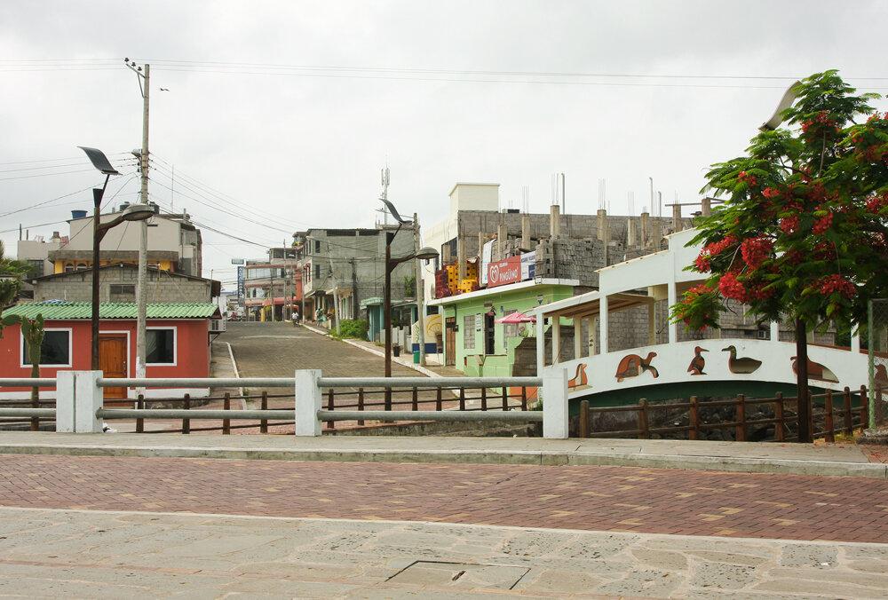 Пуэрто-Бакерисо-Морено
