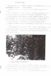 Дневник 1957