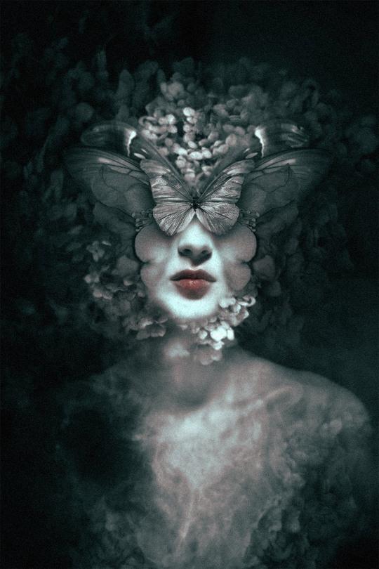 Девушки, бабочки и сигаретный дым Цифровые портреты  Федерико Беббера