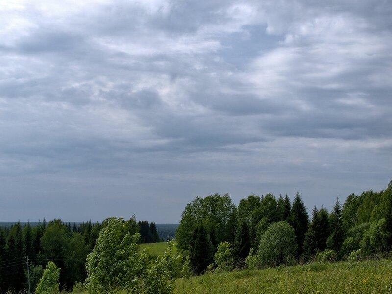 ветер, деревья и небо