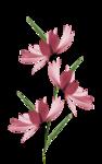 tubeclaudiaviza-flores173.png