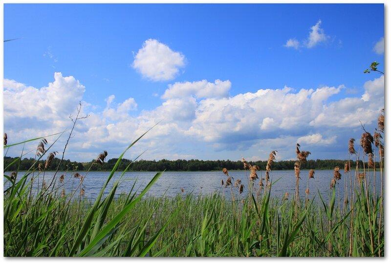 смоленская область у озера отдых и рыбалка