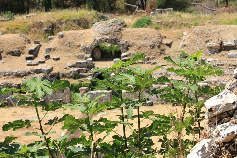 Сицилия, Сиракузы, АрхеологическийпаркНеаполис