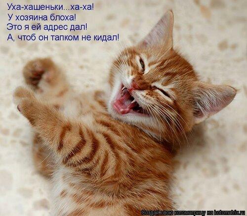 http://img-fotki.yandex.ru/get/6114/63000659.8d/0_74305_b5307741_L.jpg