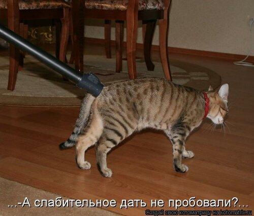 http://img-fotki.yandex.ru/get/6114/63000659.8d/0_74308_6f95e199_L.jpg