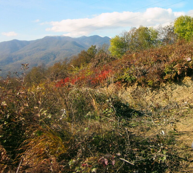Фотограф Виктор Шалтаев, ноябрь 2011, горы, Кавказ
