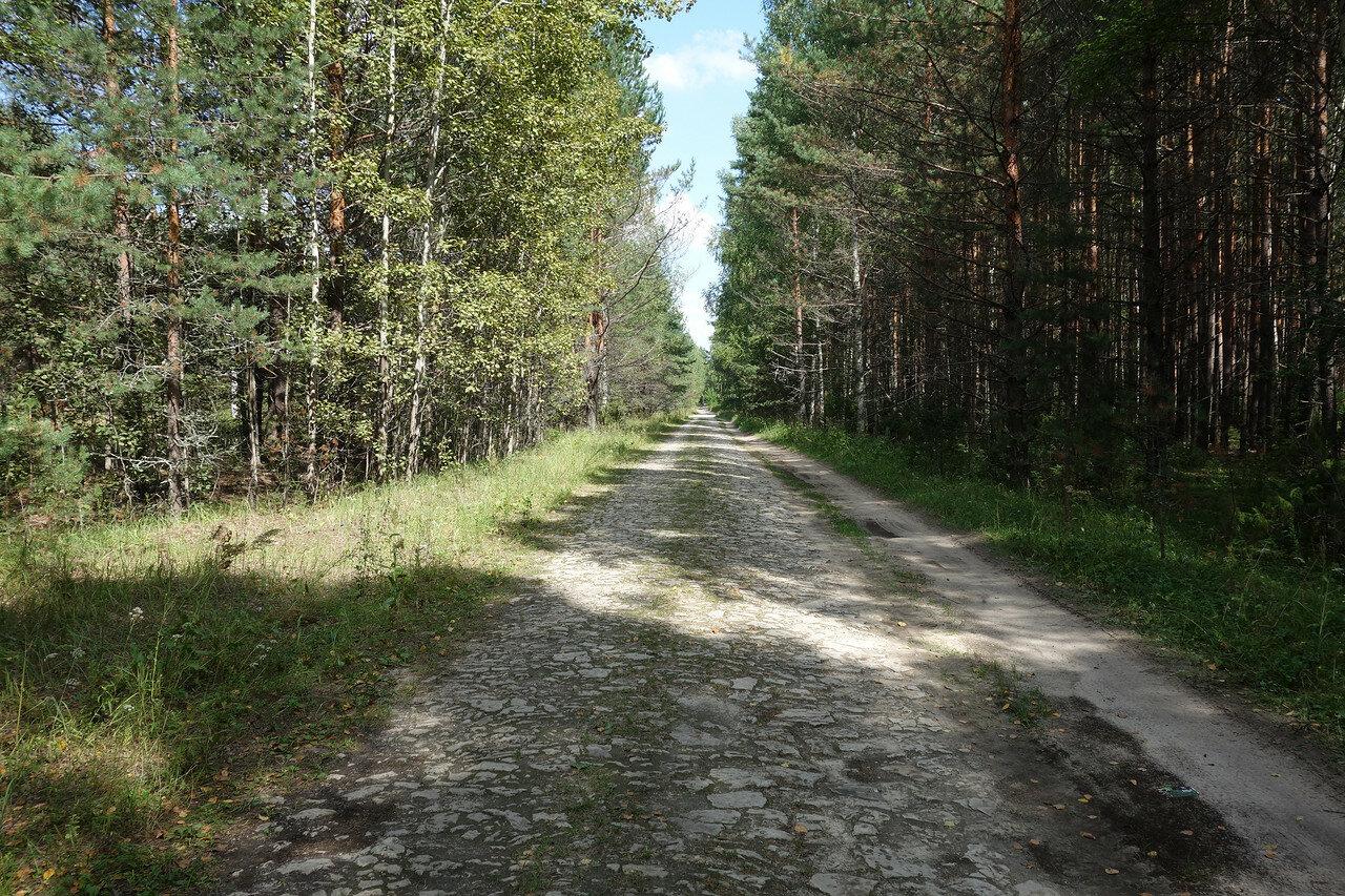 мощеная камнями древняя дорога