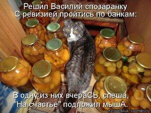 https://img-fotki.yandex.ru/get/61164/194408087.13/0_1373ae_a1a1feb5_M.jpg