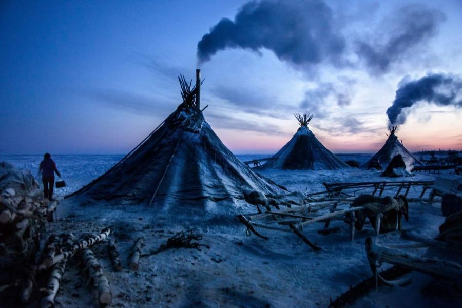 1. Чумы ненецких оленеводов в арктической тундре в Ненецком автономном округе. Под влиянием коллекти