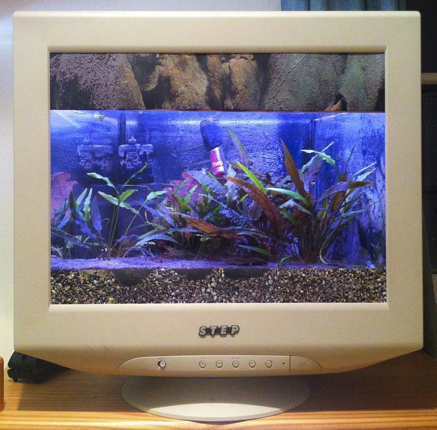 2. Особо продвинутые «реинкарнаторы» могут даже соорудить из монитора аквариум.
