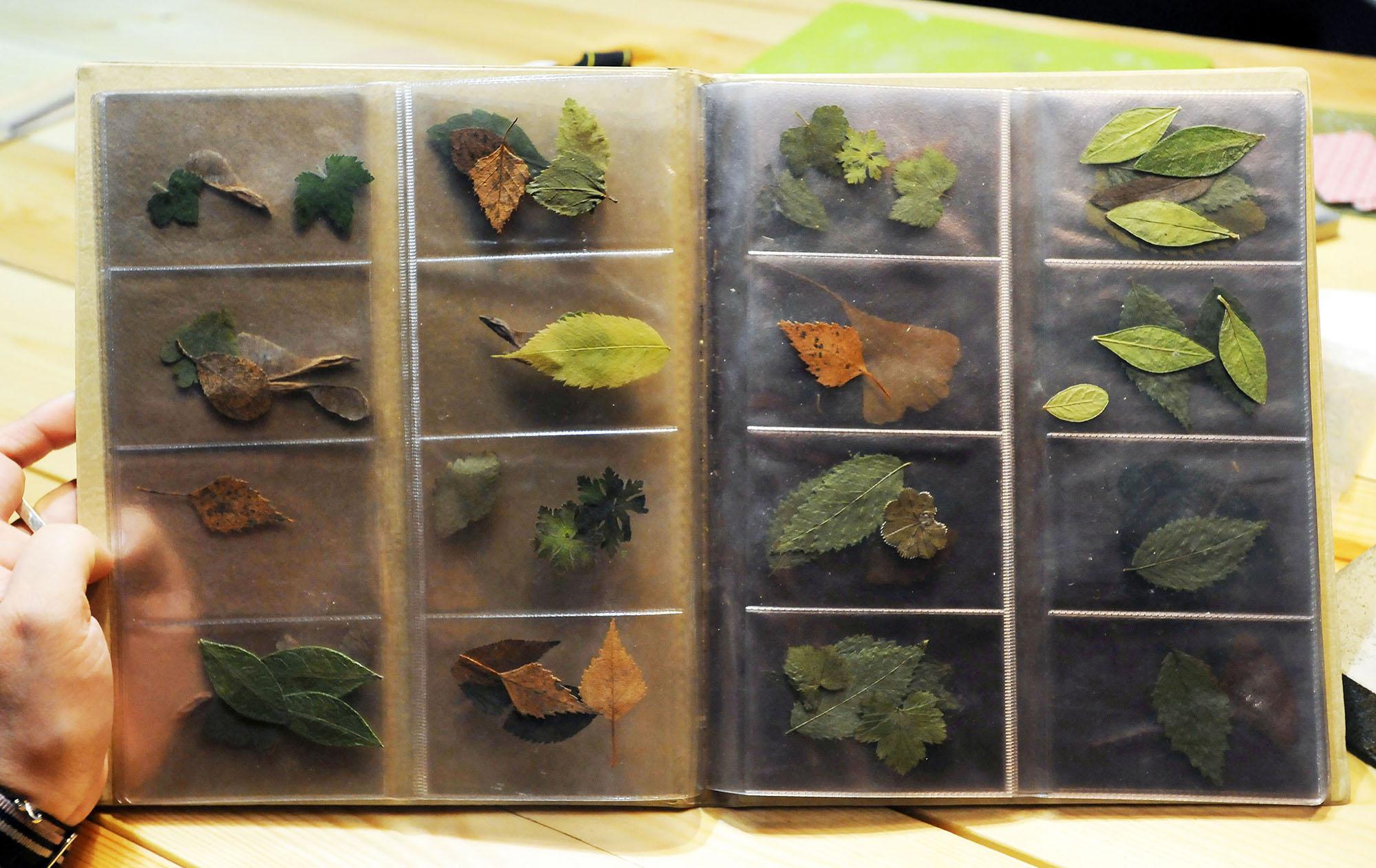 А можно в качестве заготовки для будущего украшения использовать засушенные листья. Если листочек по