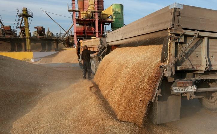 Ставрополье экспортировало 600 тыс.  тонн пшеницы
