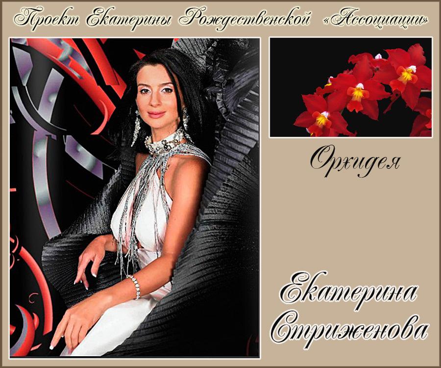 https://img-fotki.yandex.ru/get/61164/92936793.45/0_16e285_3a2daea8_orig.jpg