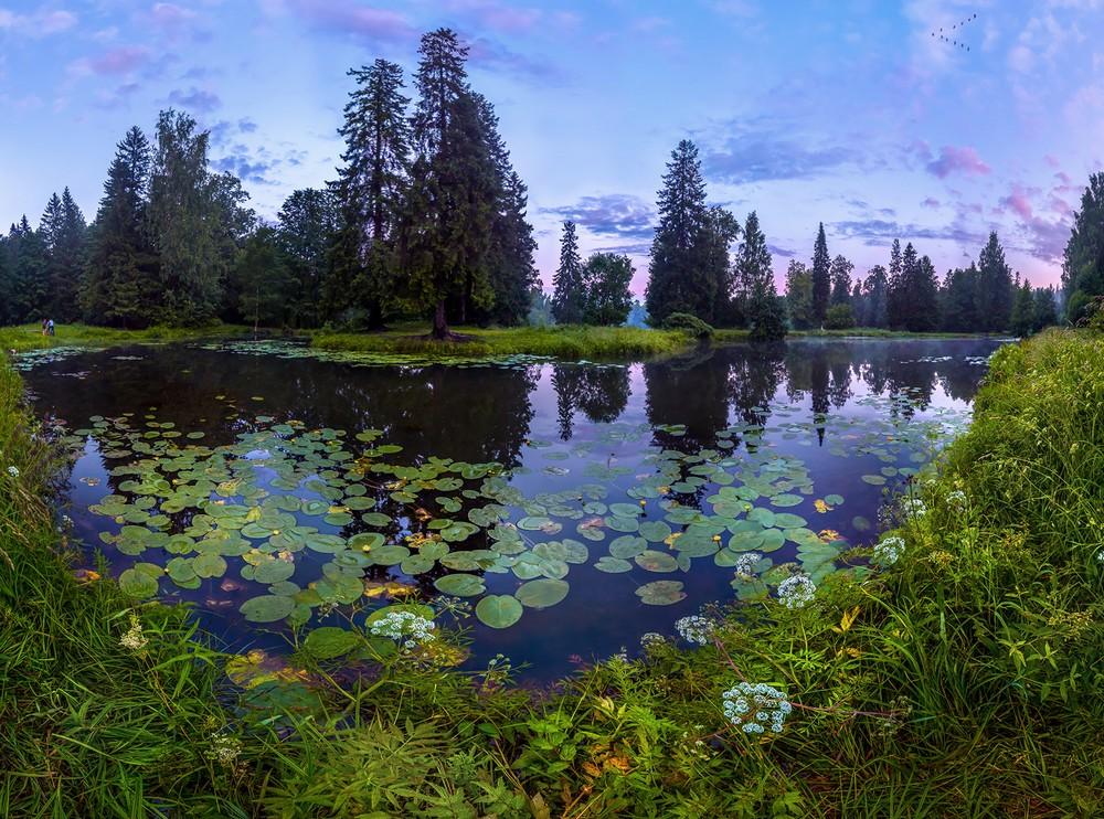 Красивые пейзажи Фёдора Лашкова