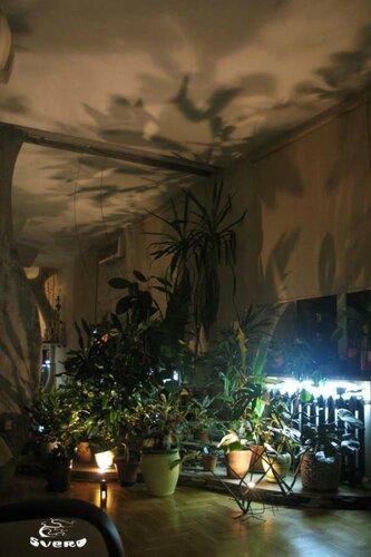 006. холл, радиаторы с подсветкой, интерьер, зеленая зона