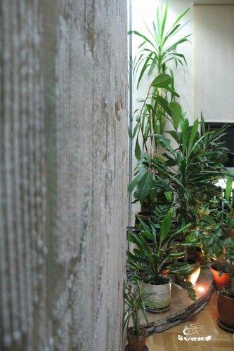 007. холл, интерьер, зеленая зона, декоративная штукатурка