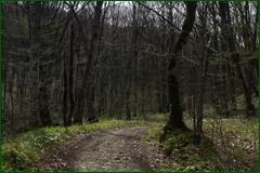 http://img-fotki.yandex.ru/get/61248/15842935.2ac/0_e23ad_db526707_orig.png
