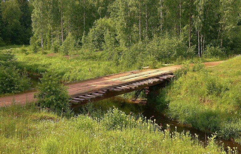 лесной мост