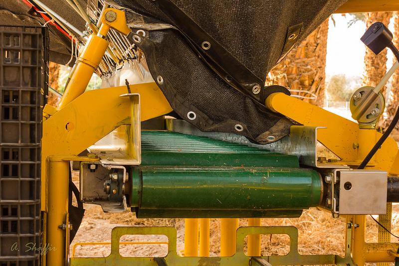 31. Установленные на подъемной платформе «крылья» охватывают крону пальмы на 360 градусов.