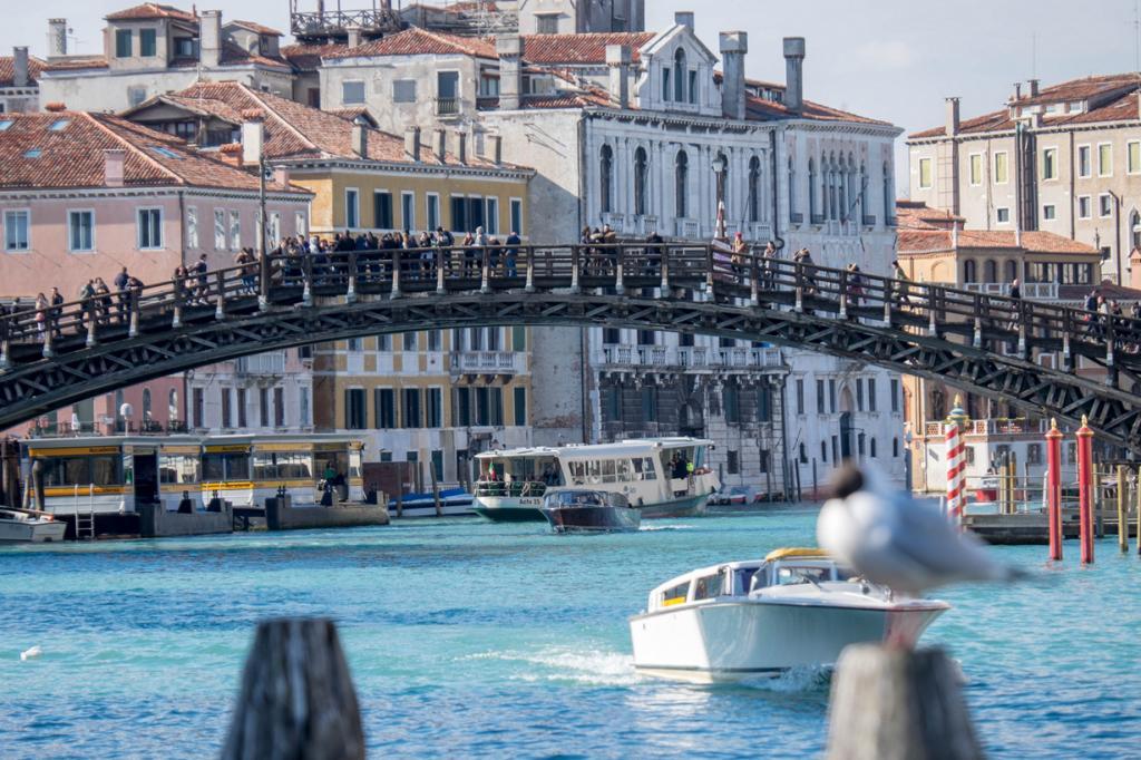 На шестом месте оказалась Венеция. Эпицентром снимков стал Мост Академии— оттуда открывается вел