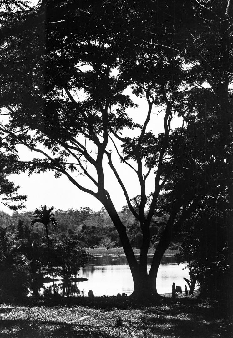409. Озеро с зеленым берегом на Маха-Оя