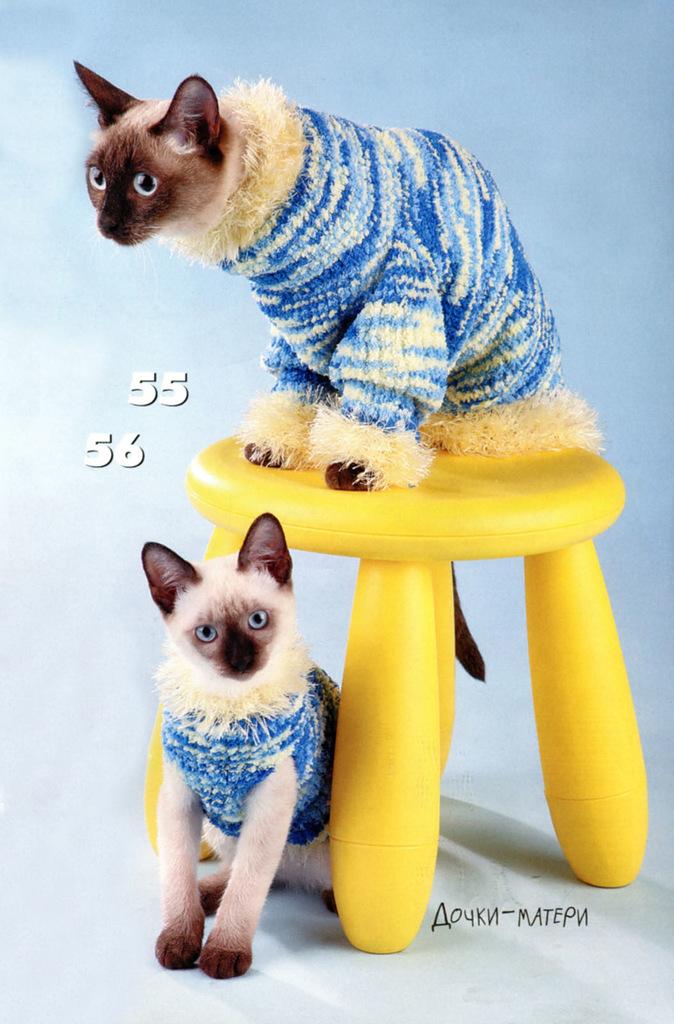 вязаное платье для кошки